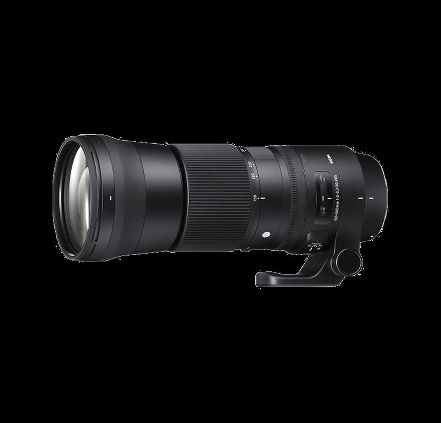 シグマ SIGMA 150-600mm F5-6.3 DG OS HSM Contemporary 超望遠ズームレンズ (CANON EFマウント)